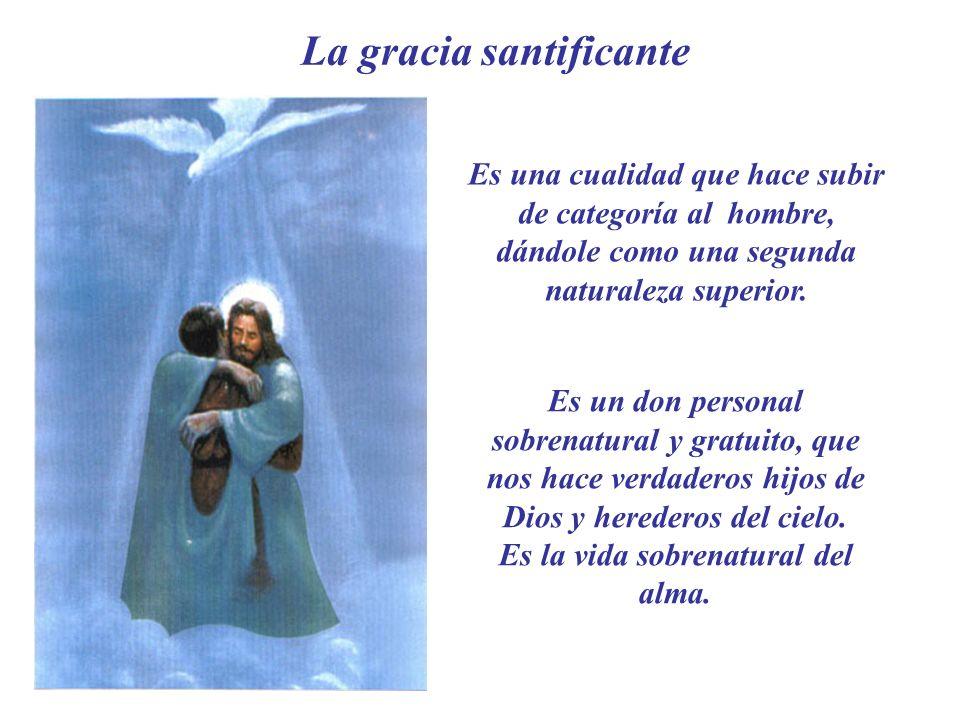 La gracia santificante