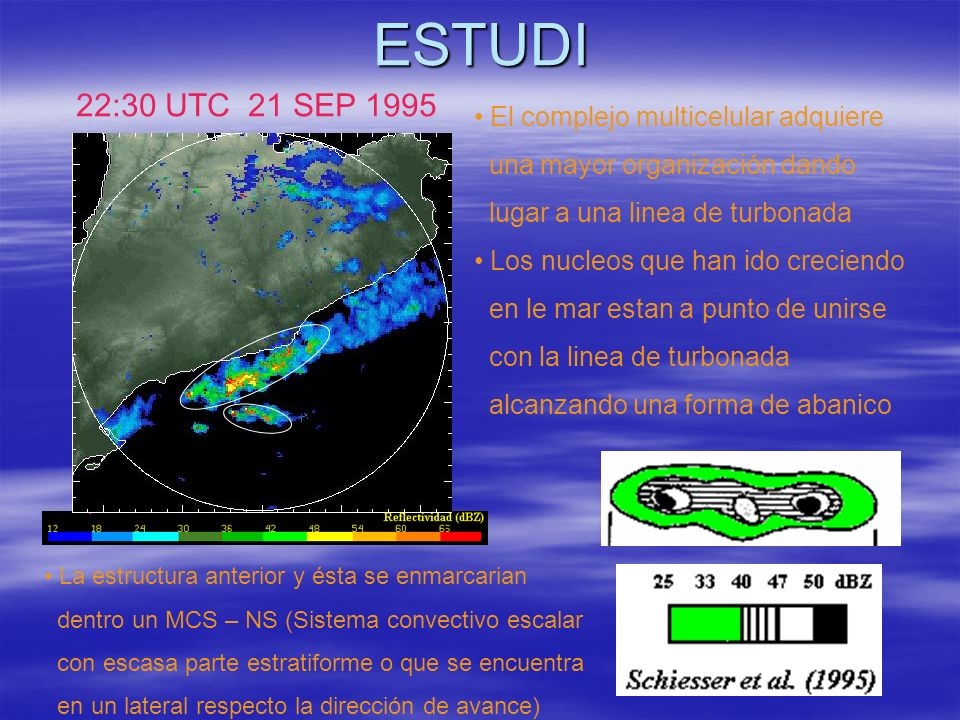 ESTUDI 22:30 UTC 21 SEP 1995 El complejo multicelular adquiere