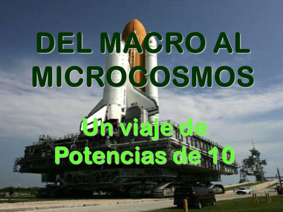 DEL MACRO AL MICROCOSMOS