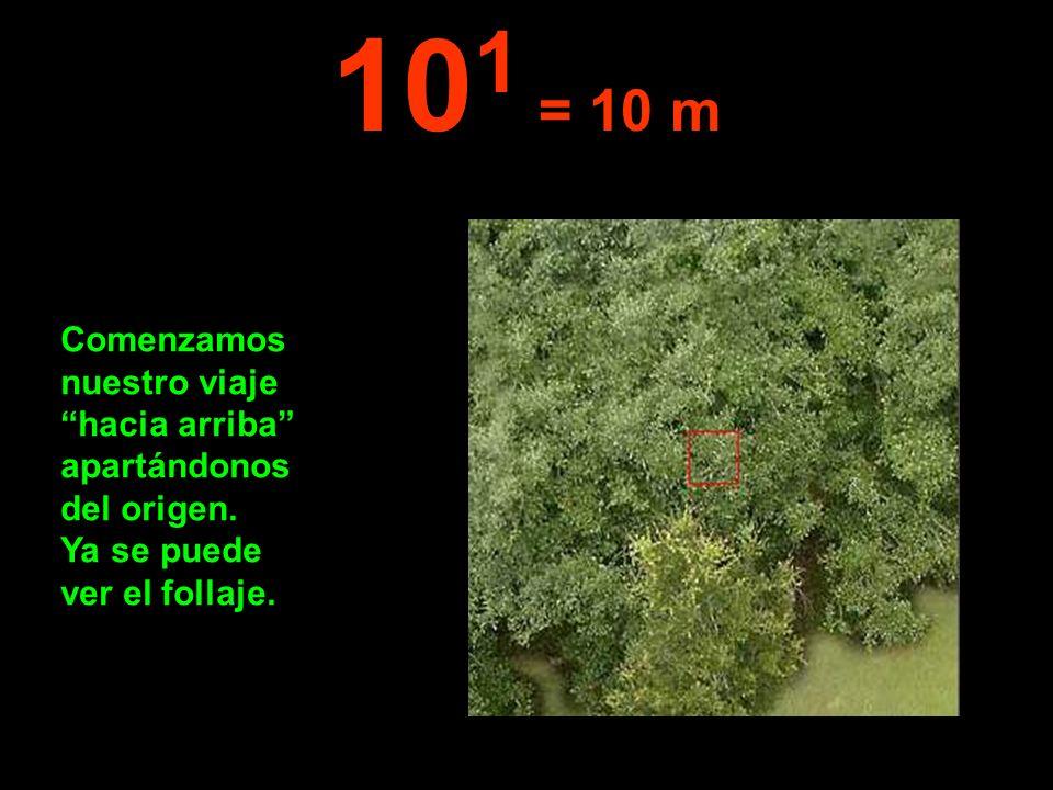101 = 10 m Comenzamos nuestro viaje hacia arriba apartándonos del origen.