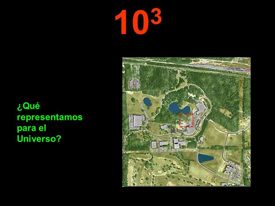 103 ¿Qué representamos para el Universo