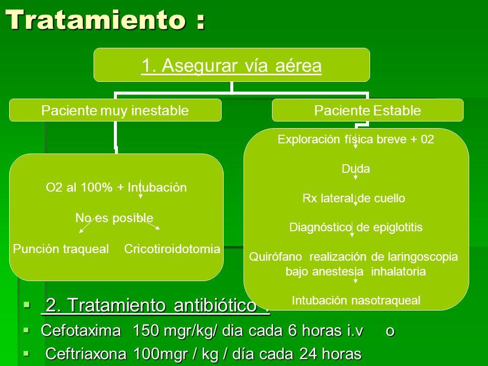 Tratamiento : 2. Tratamiento antibiótico :