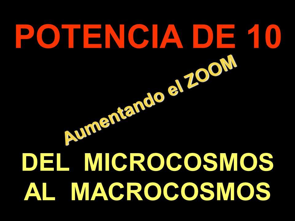 POTENCIA DE 10 Aumentando el ZOOM DEL MICROCOSMOS AL MACROCOSMOS .