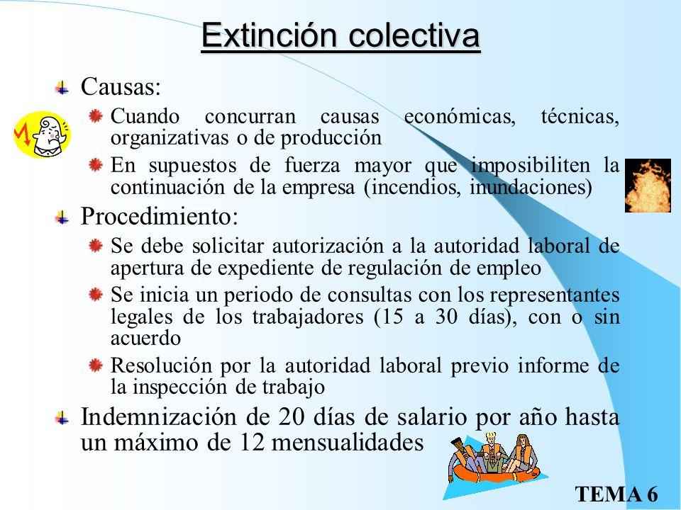Extinción colectiva Causas: Procedimiento: