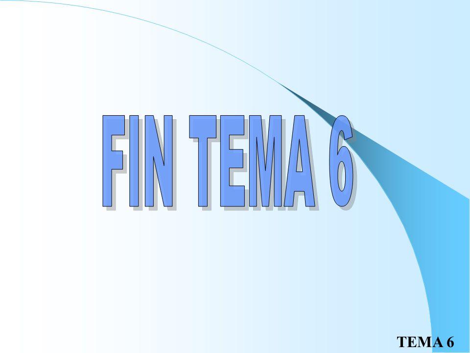 FIN TEMA 6