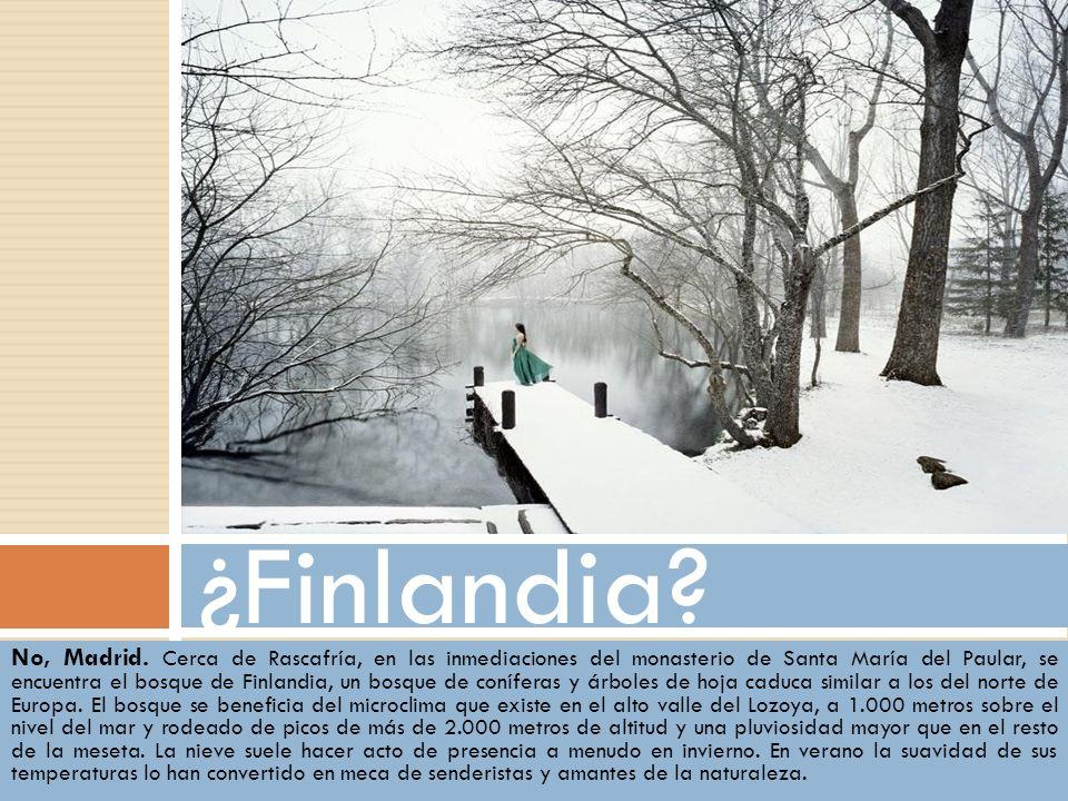 ¿Finlandia
