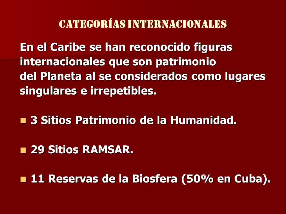 Categorías internacionales