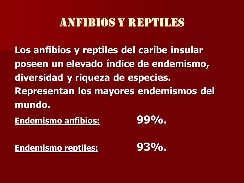 anfibios y reptiles Los anfibios y reptiles del caribe insular