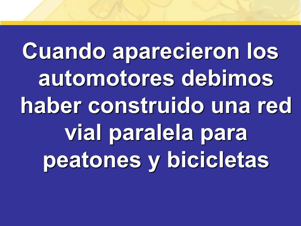Cuando aparecieron los automotores debimos haber construido una red vial paralela para peatones y bicicletas