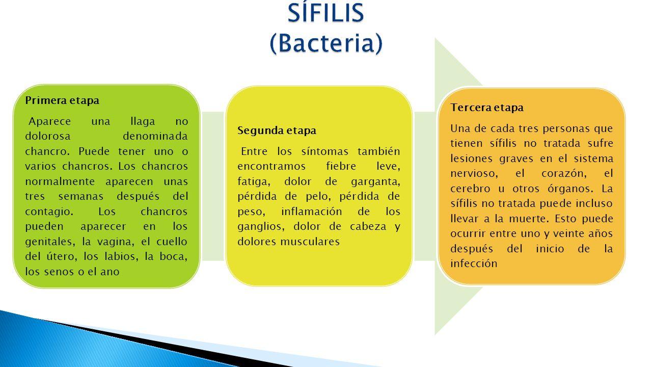 SÍFILIS (Bacteria) Primera etapa Tercera etapa