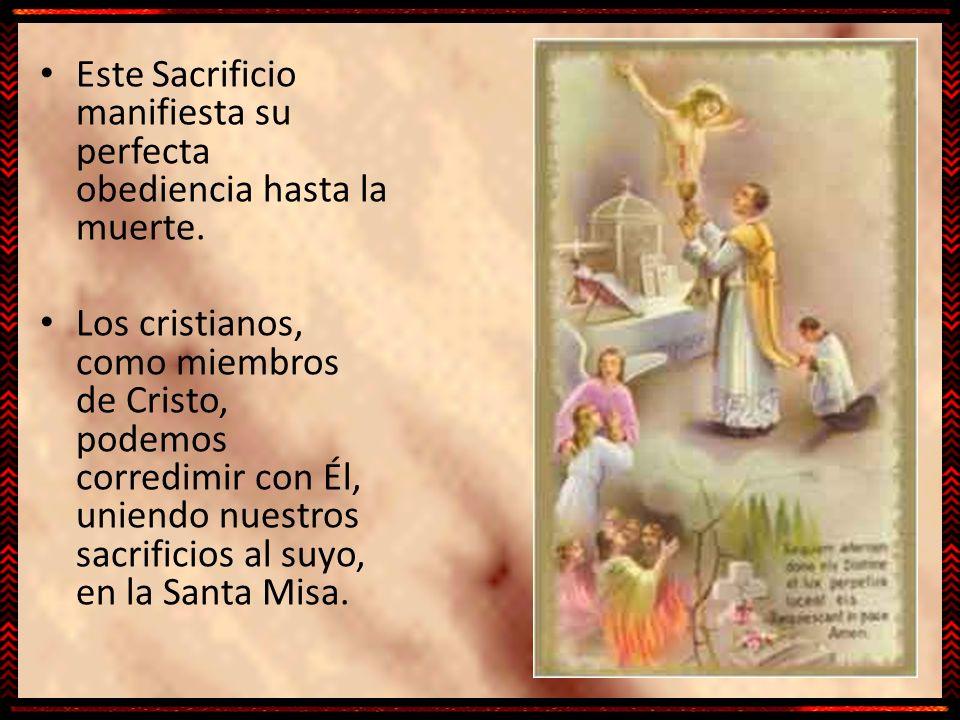 Este Sacrificio manifiesta su perfecta obediencia hasta la muerte.