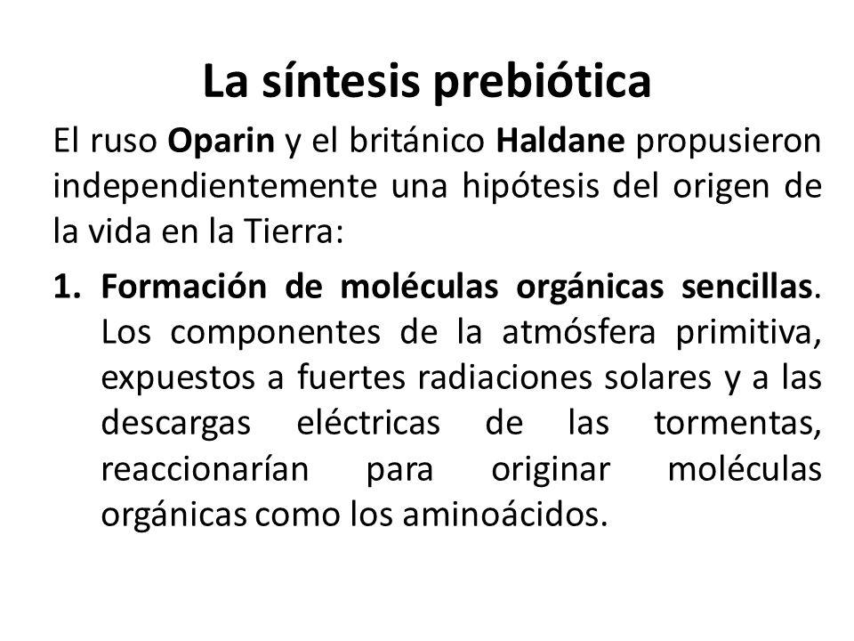 La síntesis prebiótica