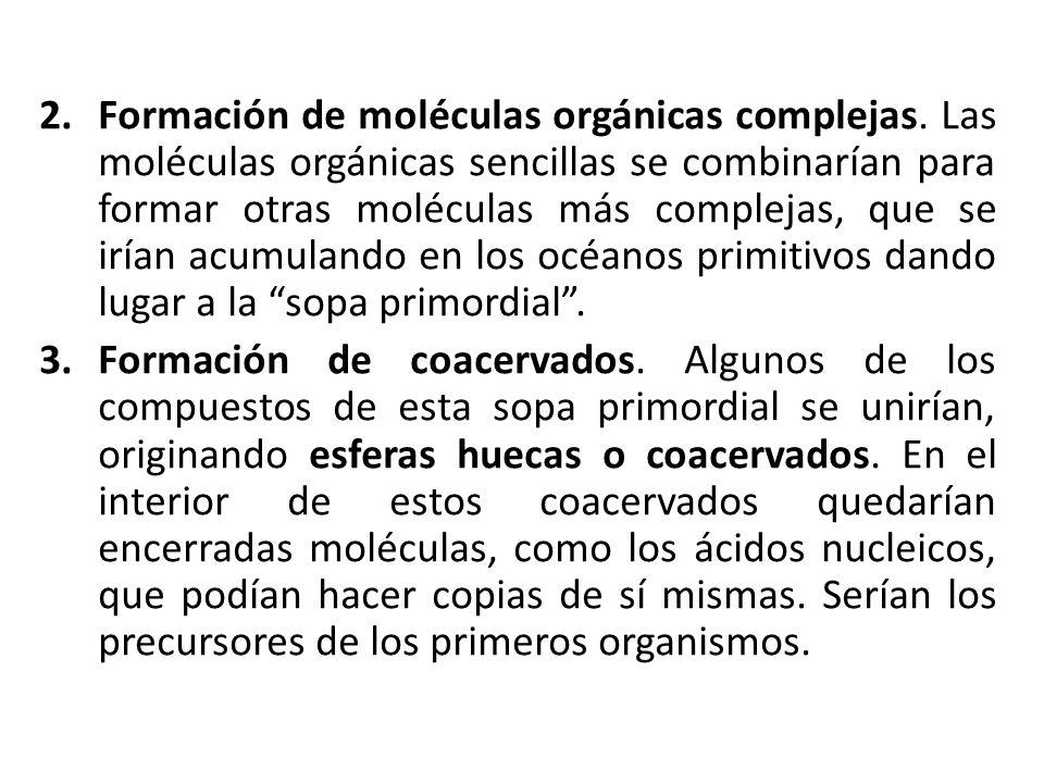 Formación de moléculas orgánicas complejas