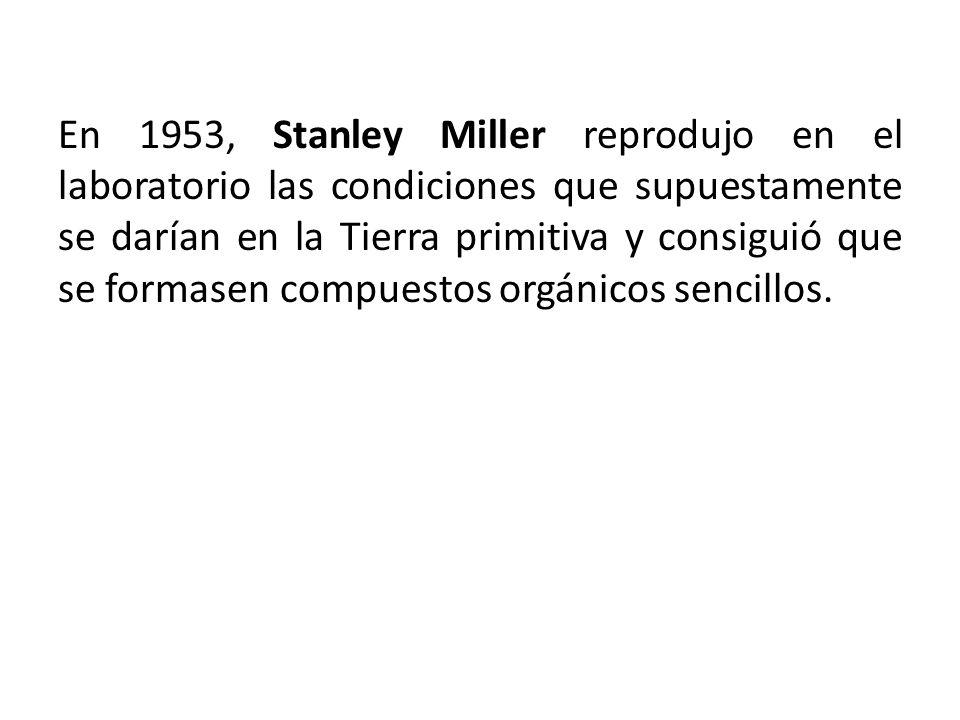 En 1953, Stanley Miller reprodujo en el laboratorio las condiciones que supuestamente se darían en la Tierra primitiva y consiguió que se formasen compuestos orgánicos sencillos.