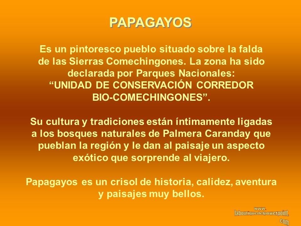 PAPAGAYOS Es un pintoresco pueblo situado sobre la falda