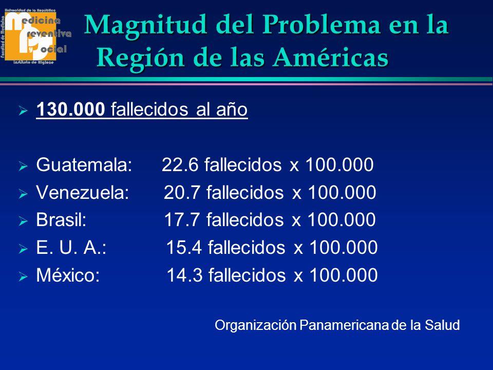 Magnitud del Problema en la Región de las Américas