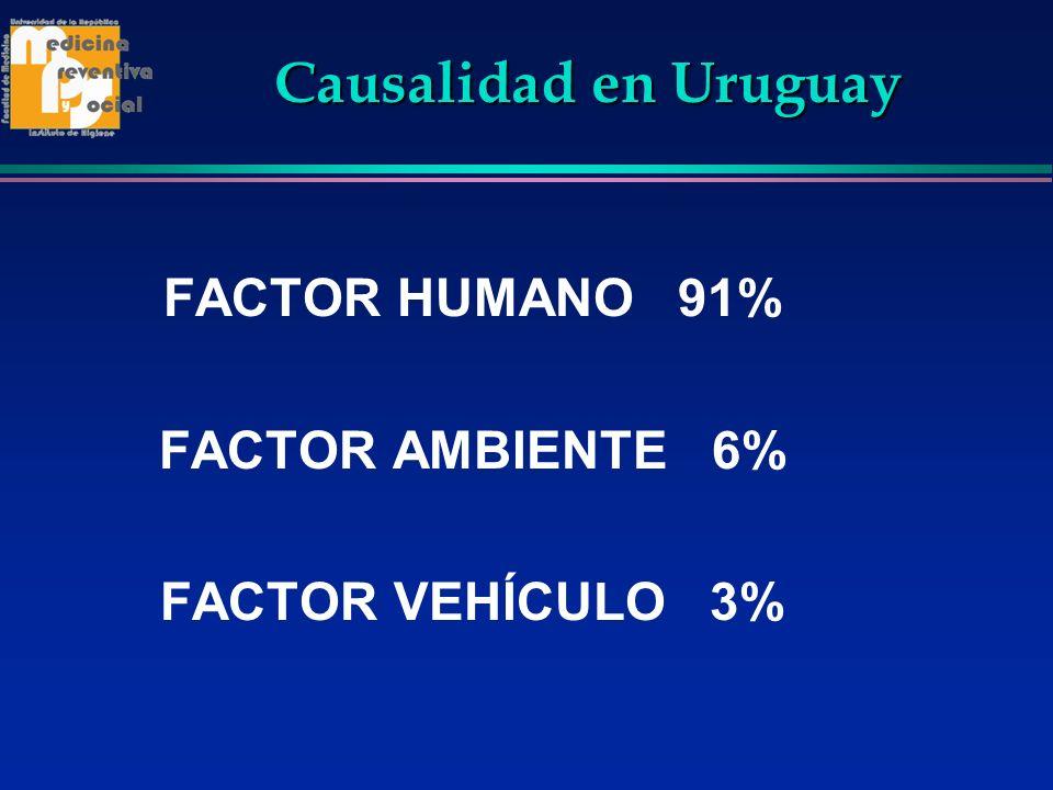 Causalidad en Uruguay FACTOR HUMANO 91% FACTOR AMBIENTE 6%