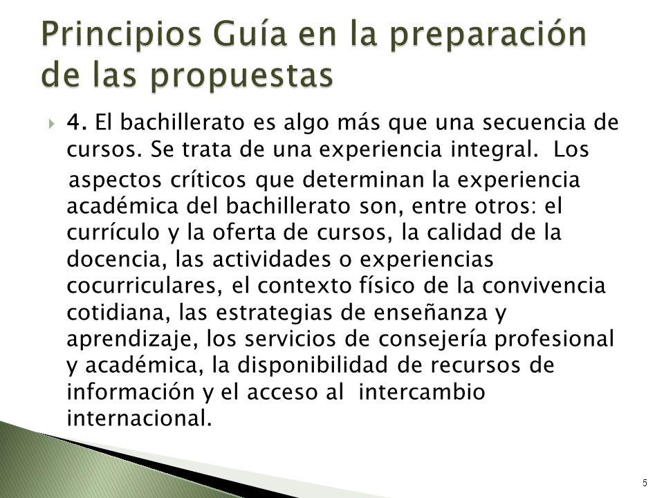 Principios Guía en la preparación de las propuestas