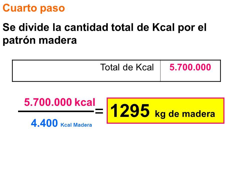 1295 kg de madera = Cuarto paso