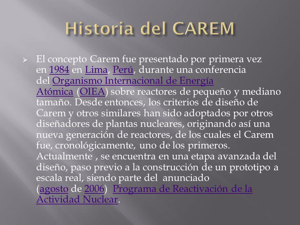 Historia del CAREM