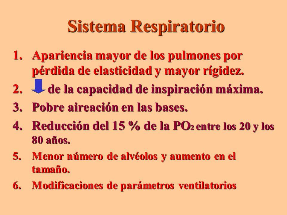 Sistema Respiratorio Apariencia mayor de los pulmones por pérdida de elasticidad y mayor rígidez. de la capacidad de inspiración máxima.