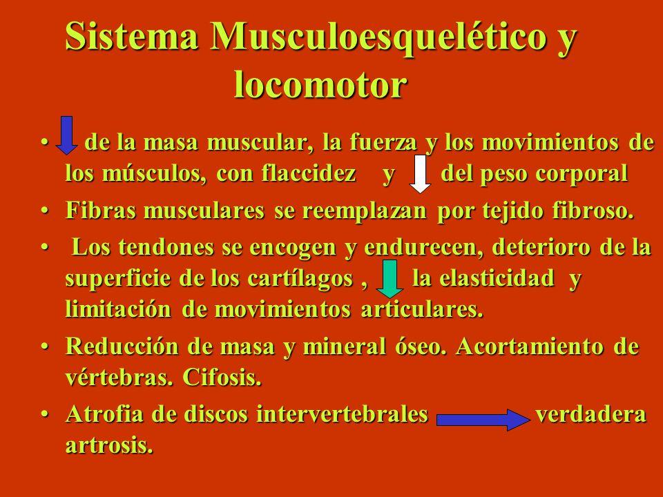 Sistema Musculoesquelético y locomotor