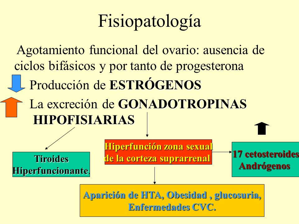Fisiopatología Agotamiento funcional del ovario: ausencia de ciclos bifásicos y por tanto de progesterona.