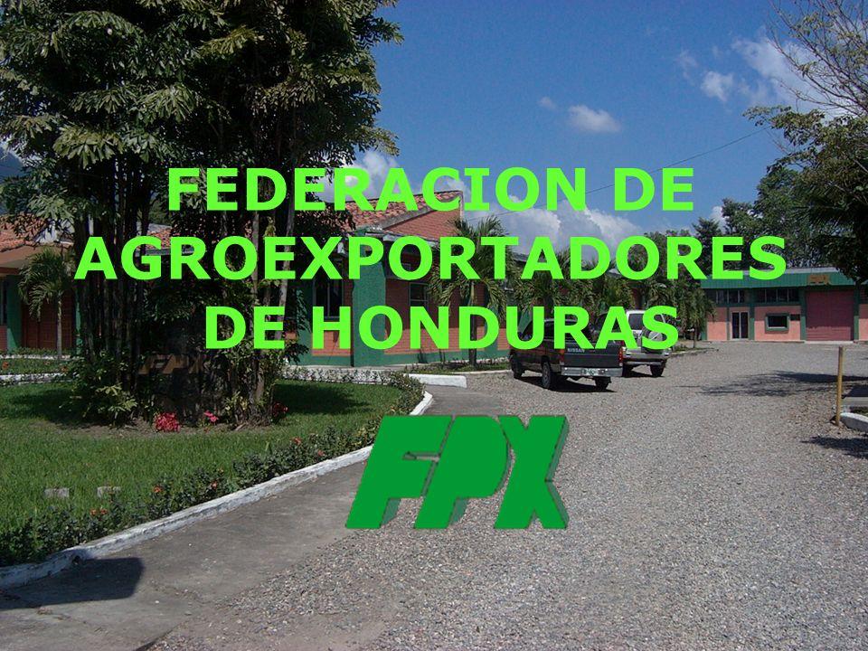 FEDERACION DE AGROEXPORTADORES