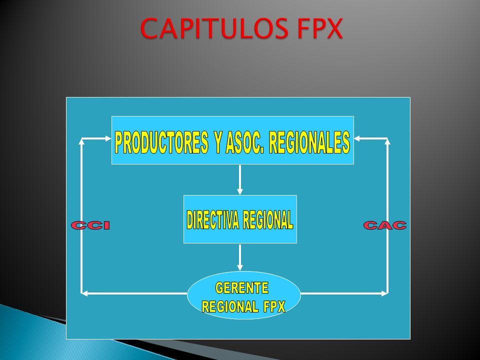 PRODUCTORES Y ASOC. REGIONALES