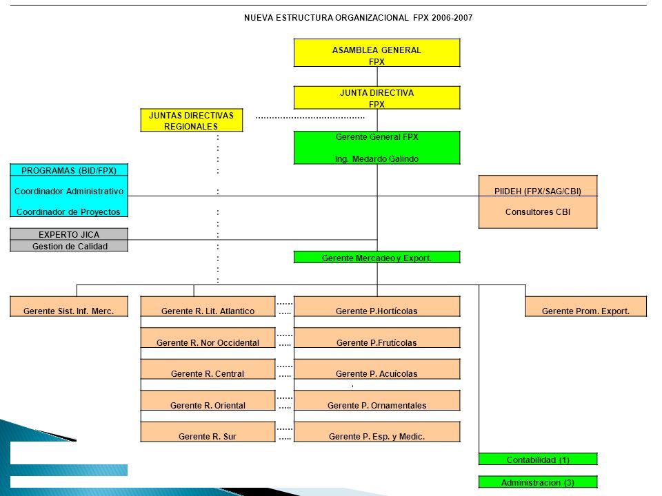 NUEVA ESTRUCTURA ORGANIZACIONAL FPX 2006-2007