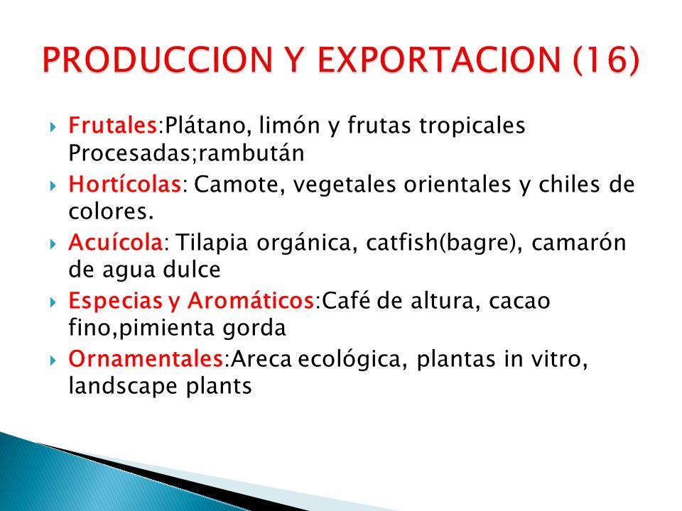 PRODUCCION Y EXPORTACION (16)