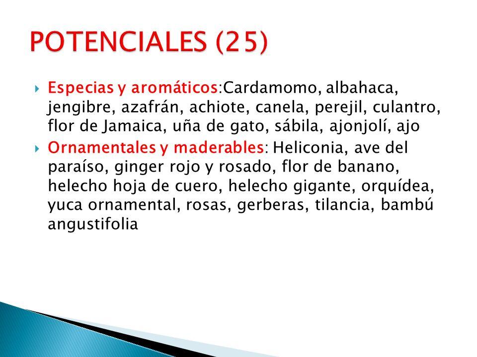 POTENCIALES (25)