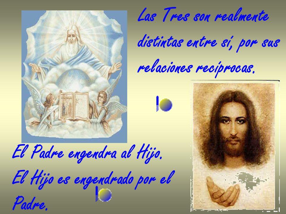 Las Tres son realmentedistintas entre sí, por sus. relaciones recíprocas. El Padre engendra al Hijo.