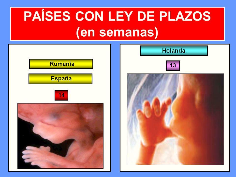 PAÍSES CON LEY DE PLAZOS (en semanas)