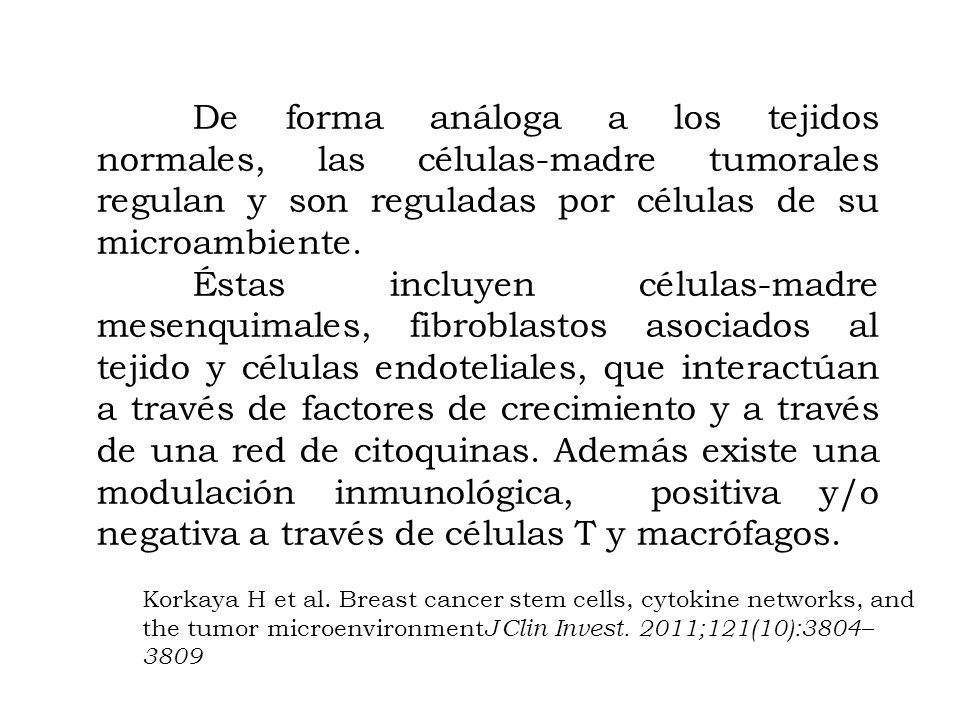 De forma análoga a los tejidos normales, las células-madre tumorales regulan y son reguladas por células de su microambiente.