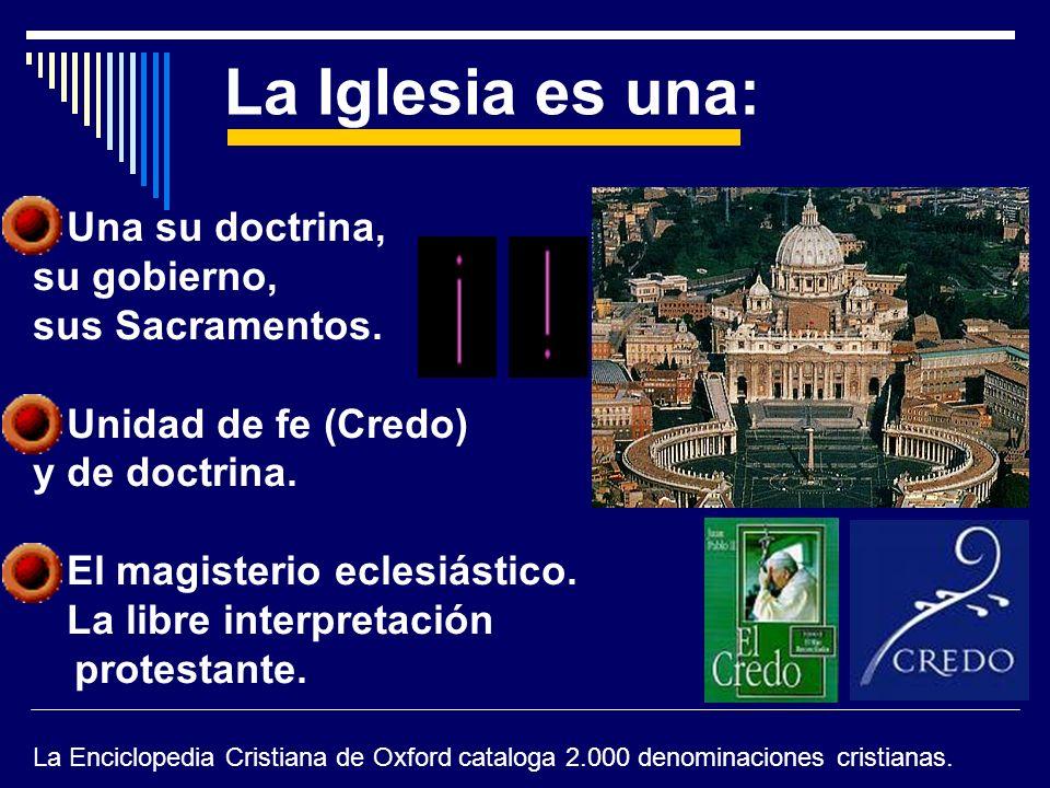 La Iglesia es una: Una su doctrina, su gobierno, sus Sacramentos.