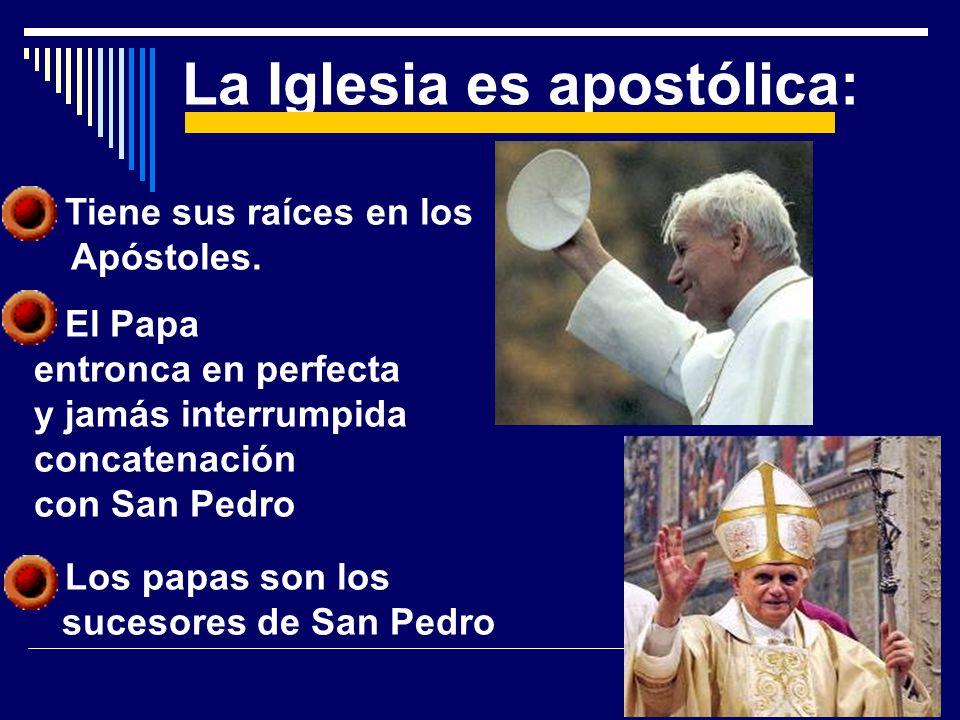 La Iglesia es apostólica: