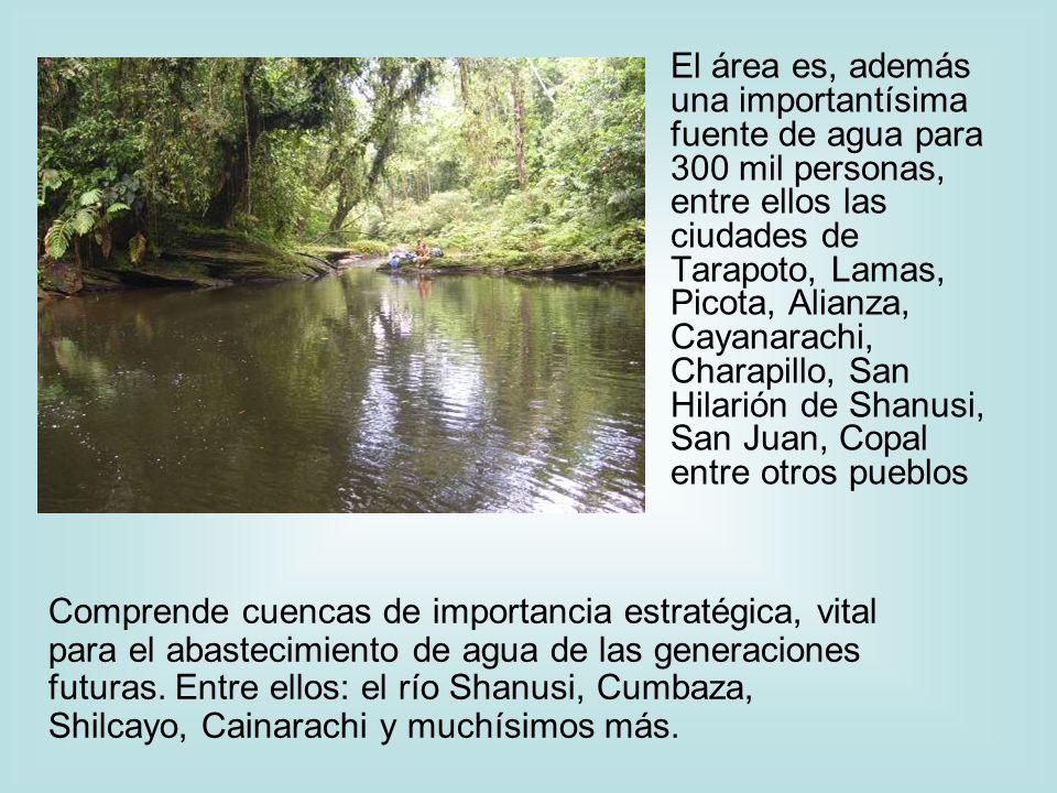 El área es, además una importantísima fuente de agua para 300 mil personas, entre ellos las ciudades de Tarapoto, Lamas, Picota, Alianza, Cayanarachi, Charapillo, San Hilarión de Shanusi, San Juan, Copal entre otros pueblos