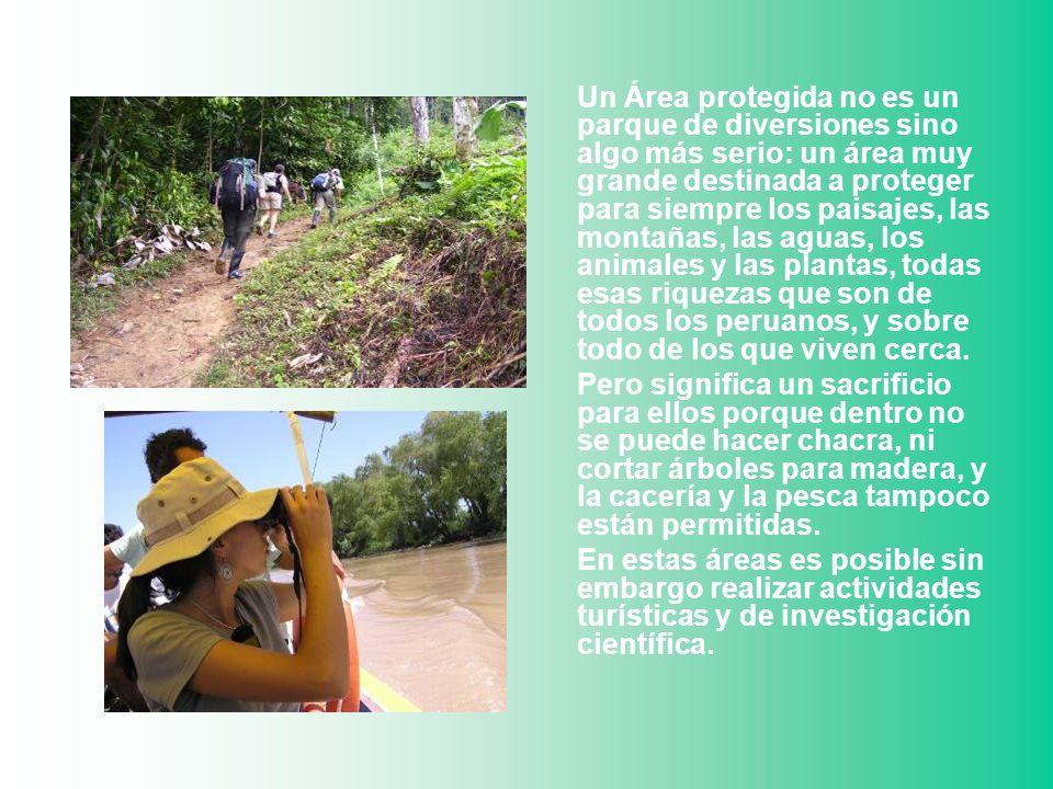 Un Área protegida no es un parque de diversiones sino algo más serio: un área muy grande destinada a proteger para siempre los paisajes, las montañas, las aguas, los animales y las plantas, todas esas riquezas que son de todos los peruanos, y sobre todo de los que viven cerca.
