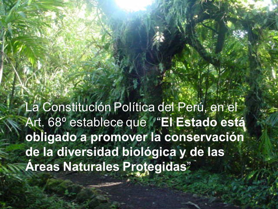 La Constitución Política del Perú, en el Art