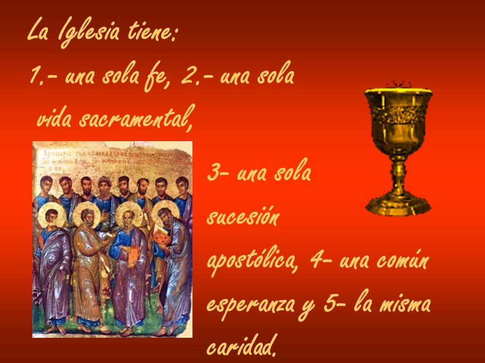 La Iglesia tiene: 1.- una sola fe, 2.- una sola. vida sacramental, 3- una sola. sucesión. apostólica, 4- una común.