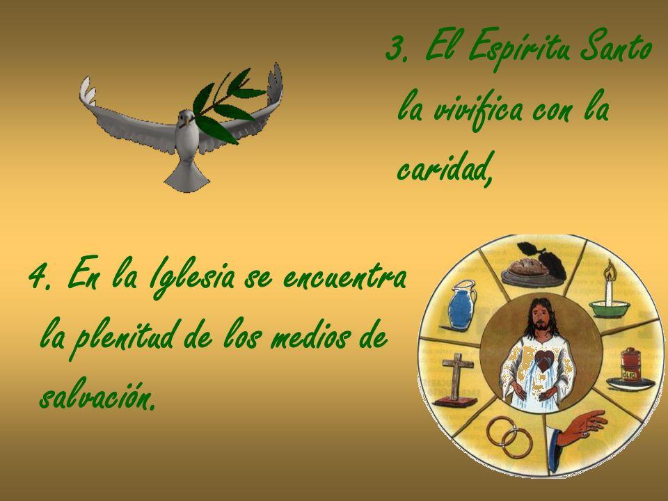 3. El Espíritu Santo la vivifica con la. caridad, 4. En la Iglesia se encuentra. la plenitud de los medios de.