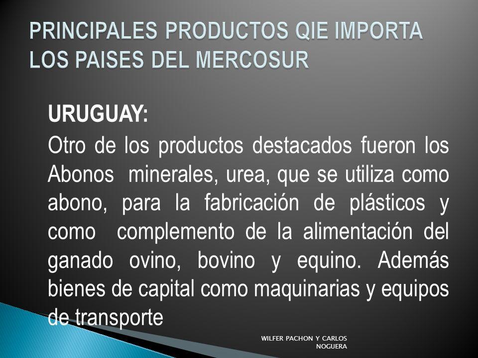 PRINCIPALES PRODUCTOS QIE IMPORTA LOS PAISES DEL MERCOSUR