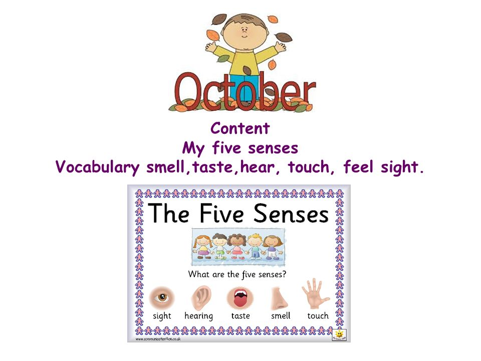 Vocabulary smell,taste,hear, touch, feel sight.