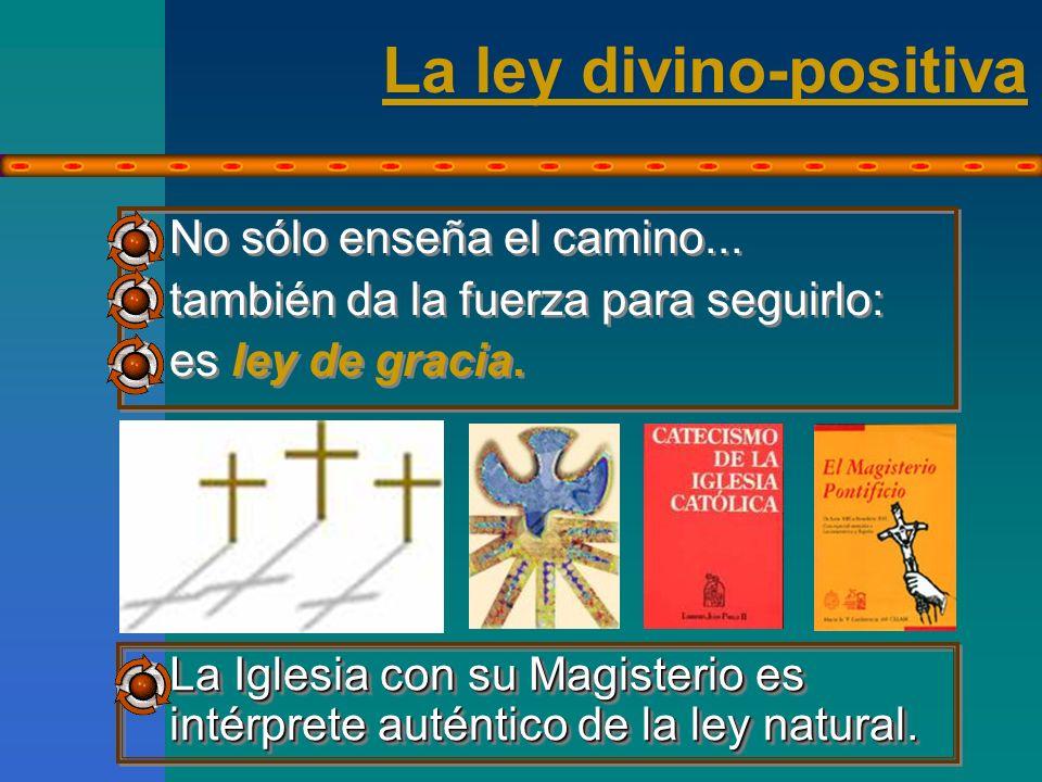 La ley divino-positiva