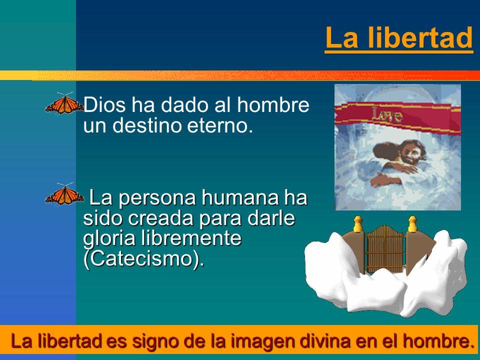 La libertad Dios ha dado al hombre un destino eterno.