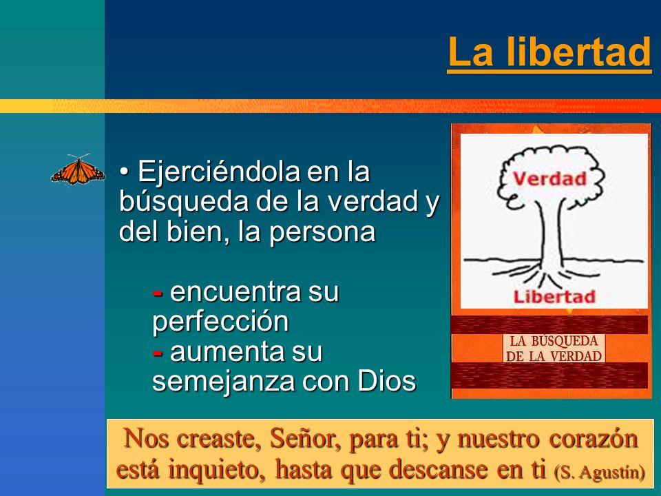 La libertad Ejerciéndola en la búsqueda de la verdad y del bien, la persona. - encuentra su perfección.