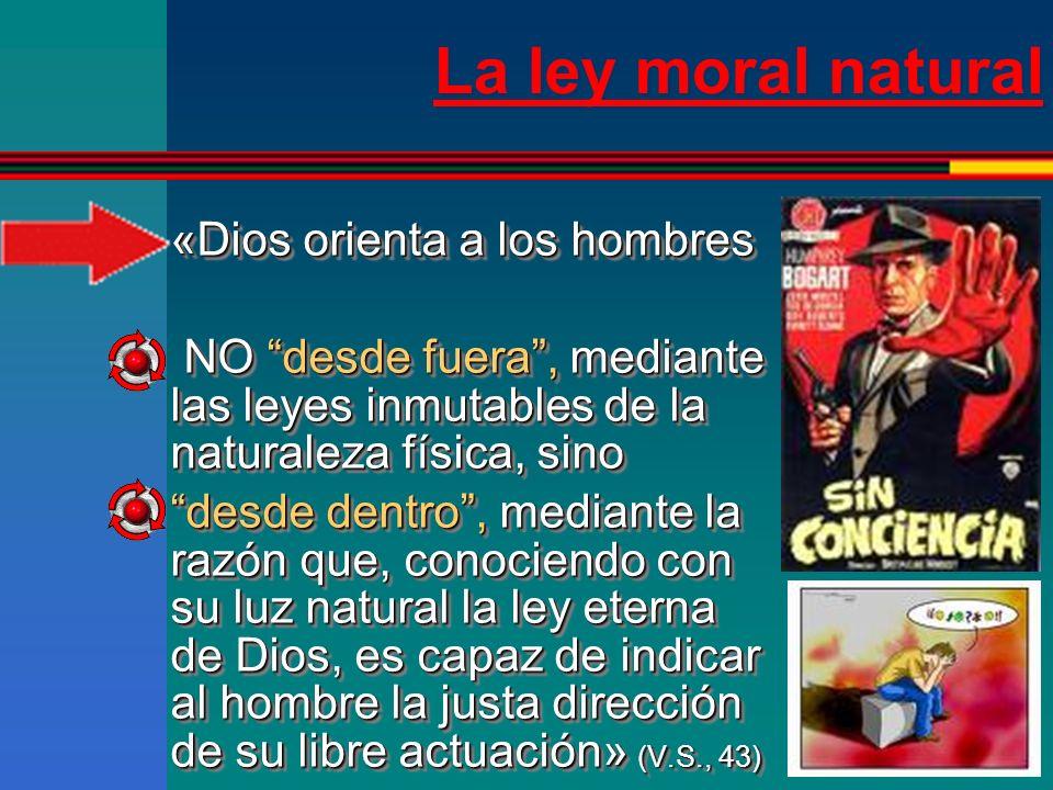 La ley moral natural «Dios orienta a los hombres