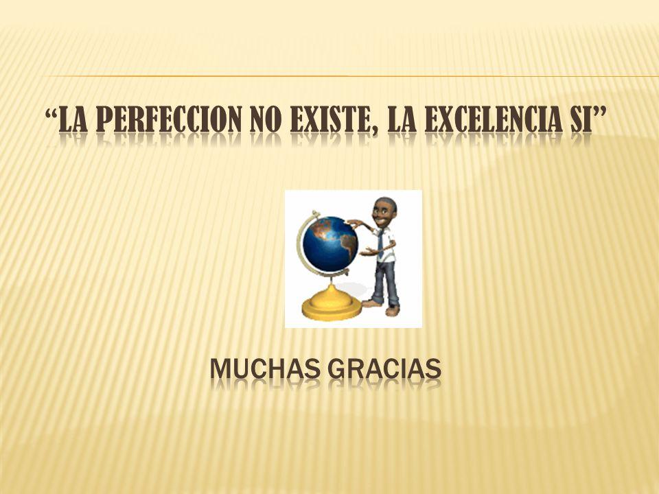 LA PERFECCION NO EXISTE, LA EXCELENCIA SI MUCHAS GRACIAS