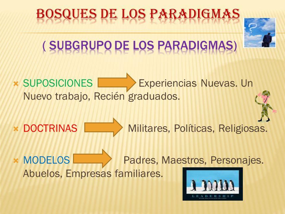 Bosques DE LOS PARADIGMAS ( Subgrupo de los Paradigmas)